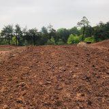 closeup_of_dirt
